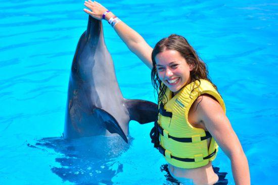 Isla Mujeres Catamarán nado con Delfines Splash desde Cancún