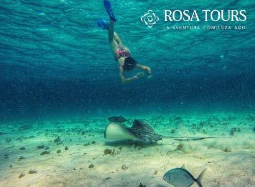 Isla Cozumel: Snorkel Clásico 2 horas