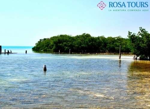 Isla Contoy económico desde Playa del Carmen