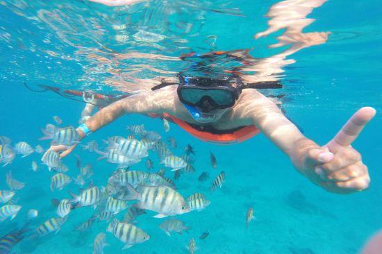 Tour Isla Cozumel: Snorkel Glass Bottom Boat 2 Hours