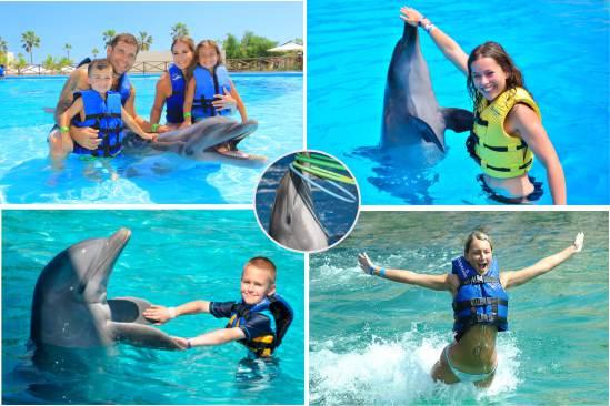 Delfines Interactivo en Cozumel