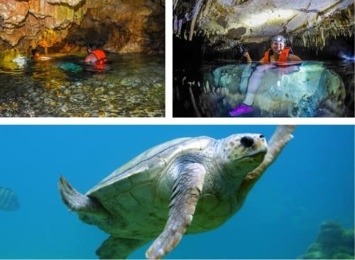 Akumal Nado con Tortugas y Cenote Caverna