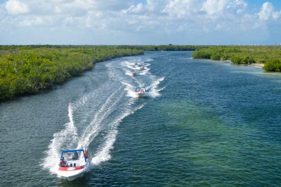 Jungle Tour desde Cancún
