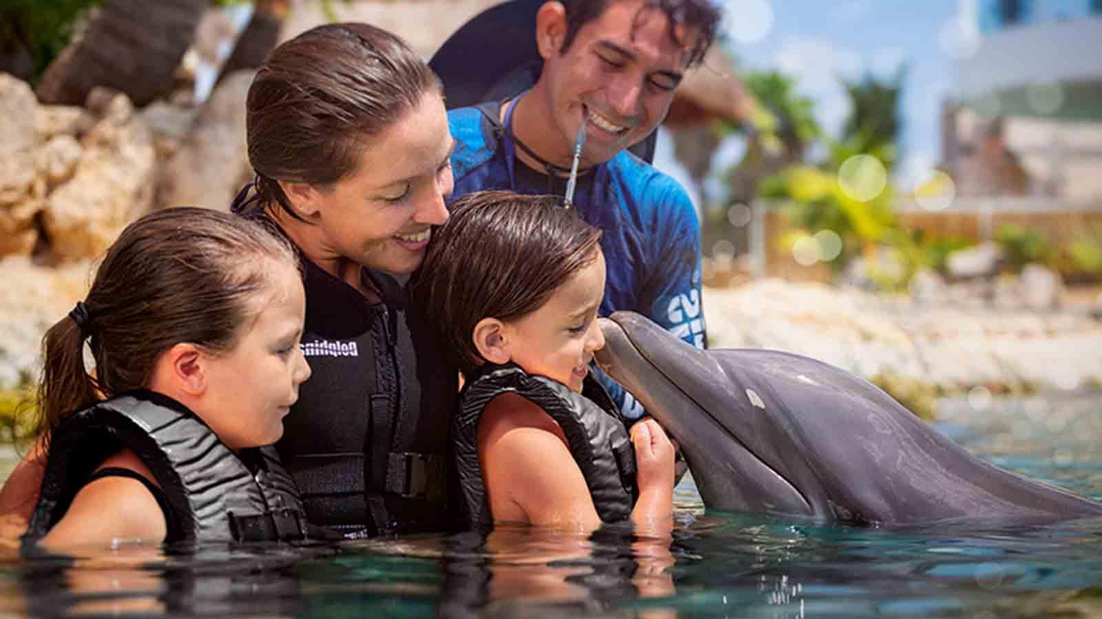 Delfines interactivo en Cozumel&IN