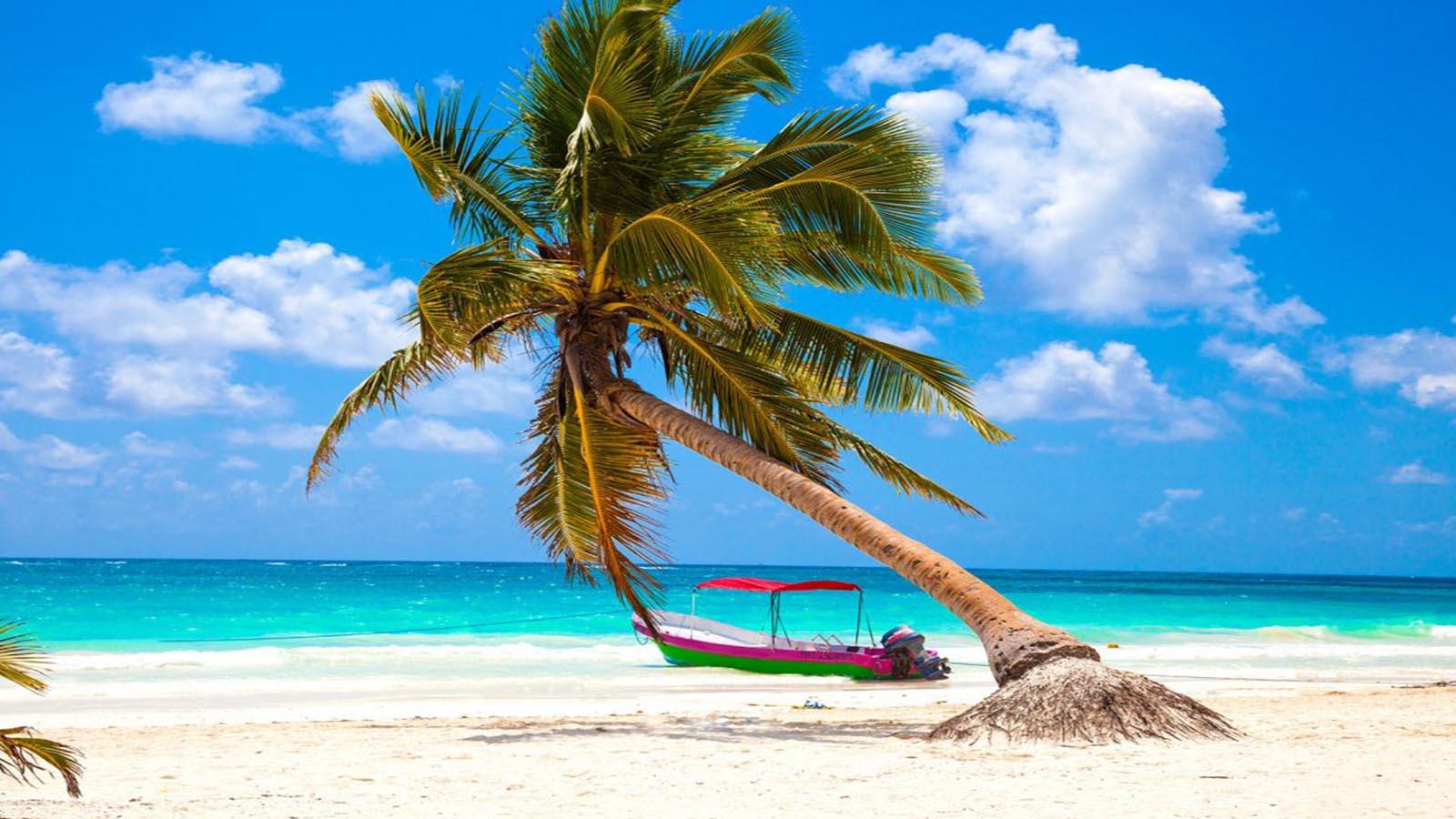 Tour Tulum, Cenote y Playa Paraíso