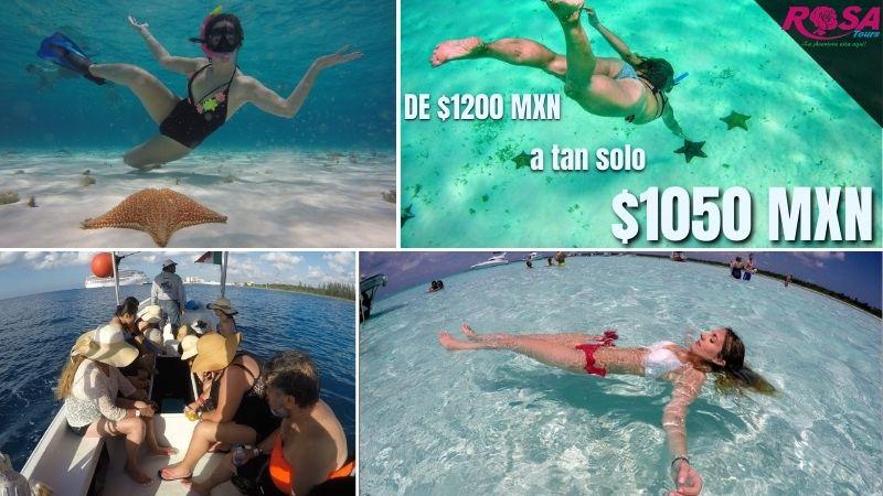 Isla Cozumel: Snorkel El Cielo